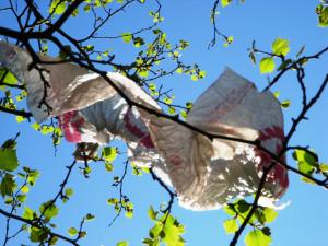 trash-in-tree